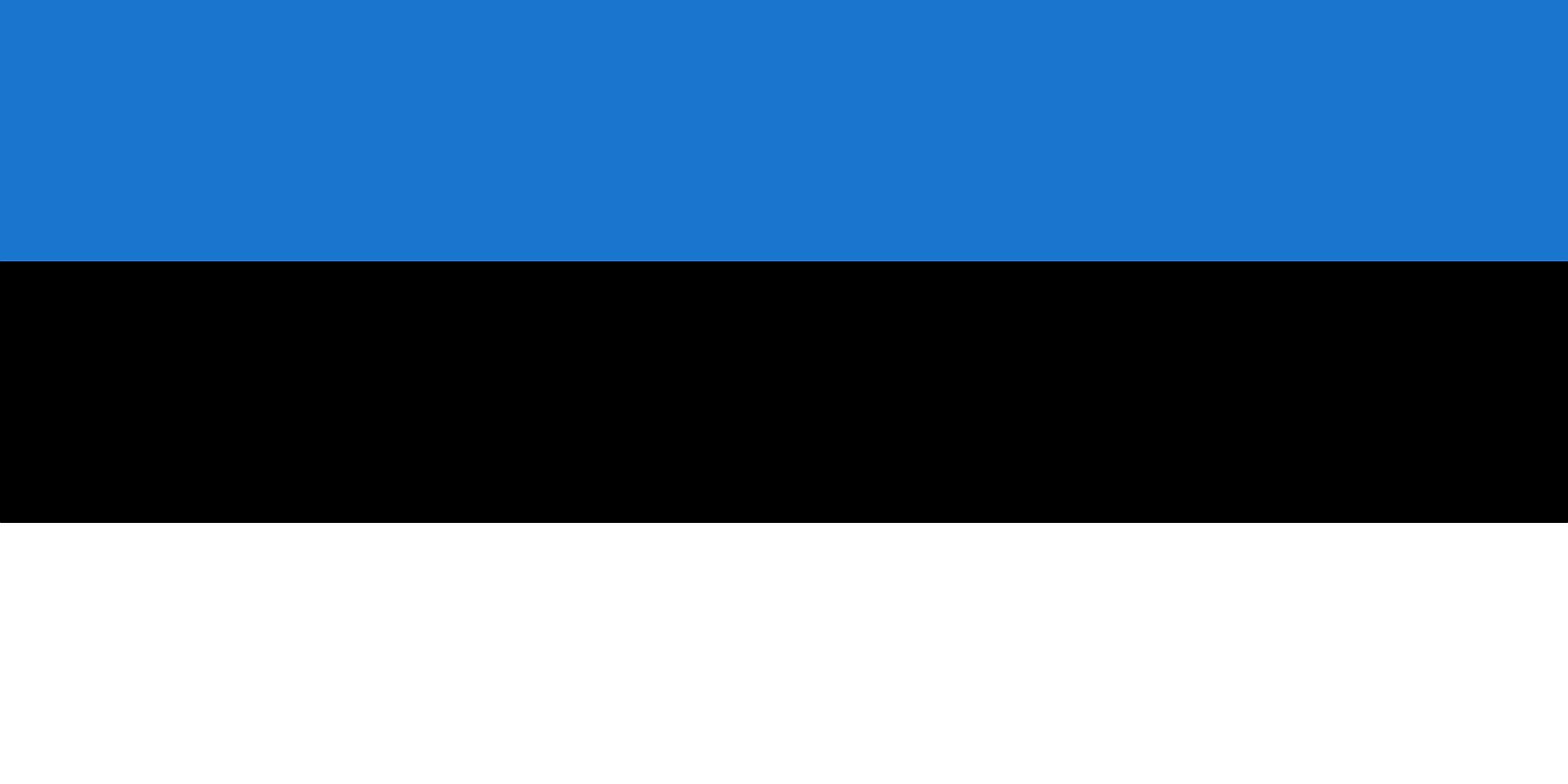 Bezpieczeństwo biznesu w Estonii